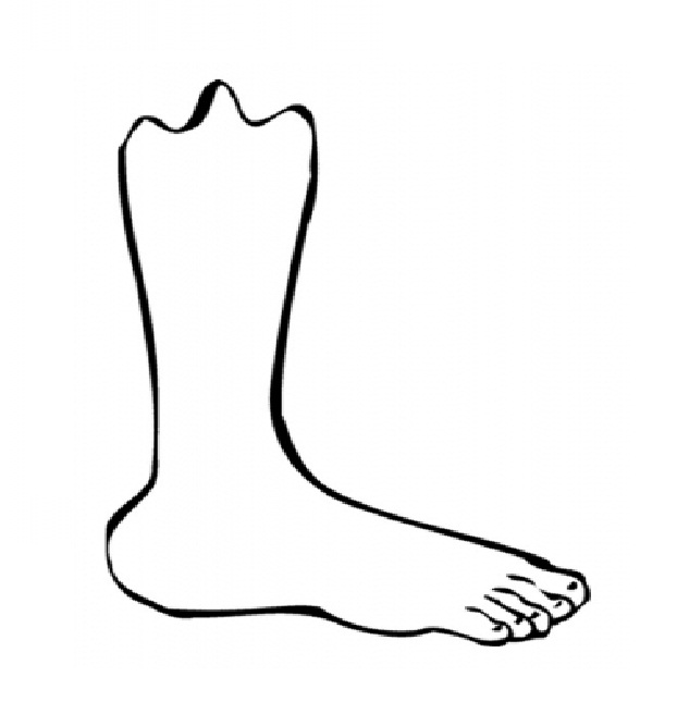 Coloring Pages of Human Foot.