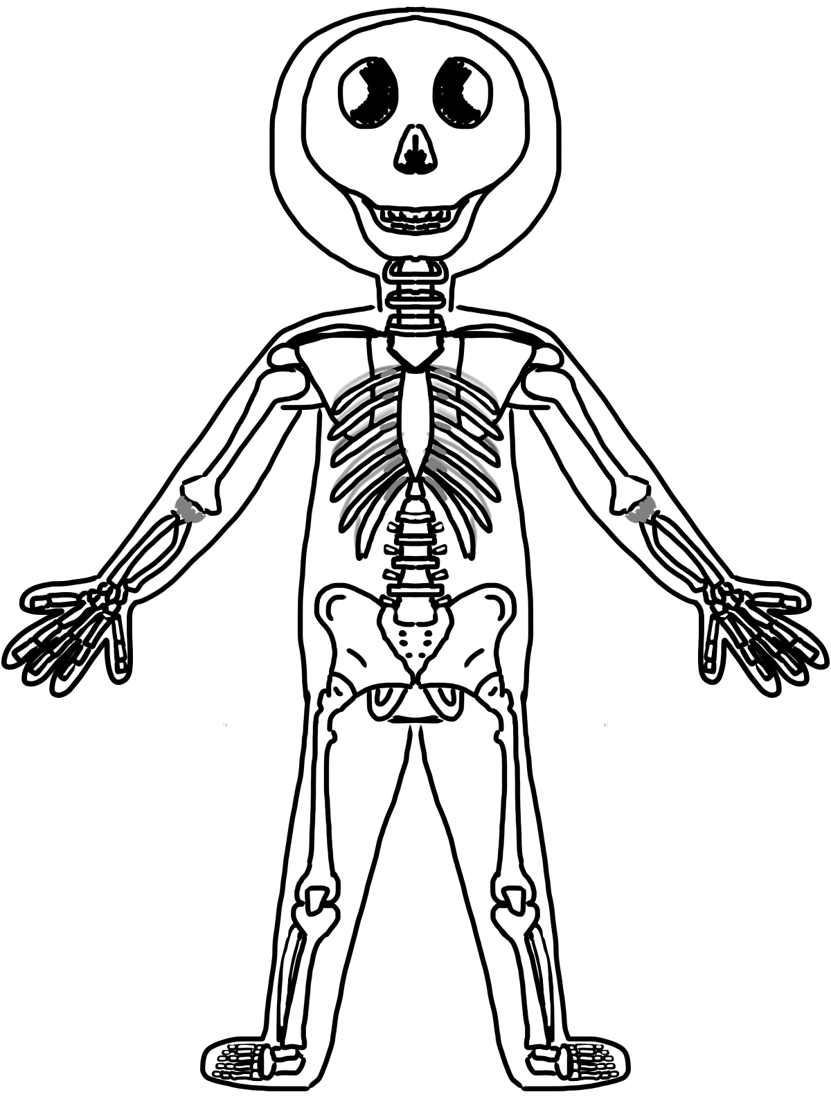 Body Systems Clipart.