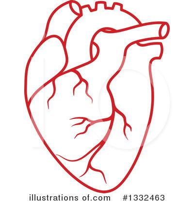 Human Heart Clipart & Human Heart Clip Art Images.
