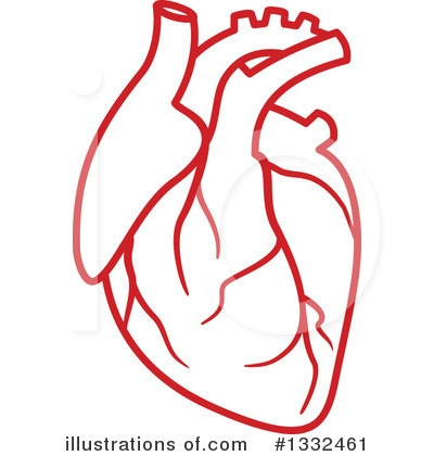 Human Heart Clipart Png.