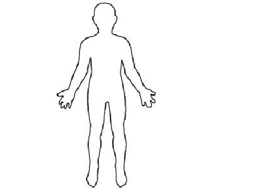 Clipart human body outline.