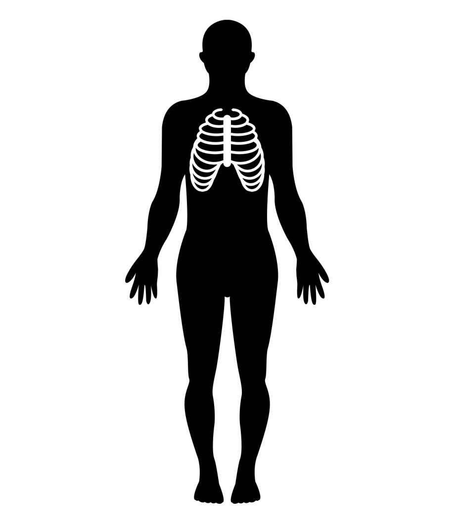 Human Silhouette Png Transparent Background.