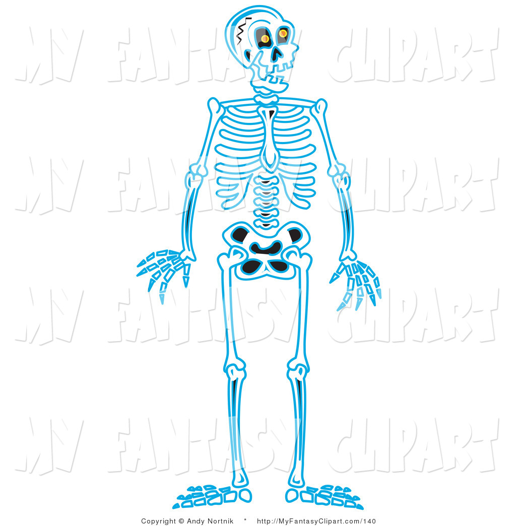 Clip Art of a Blue Human Skeleton Standing Upright on White by.
