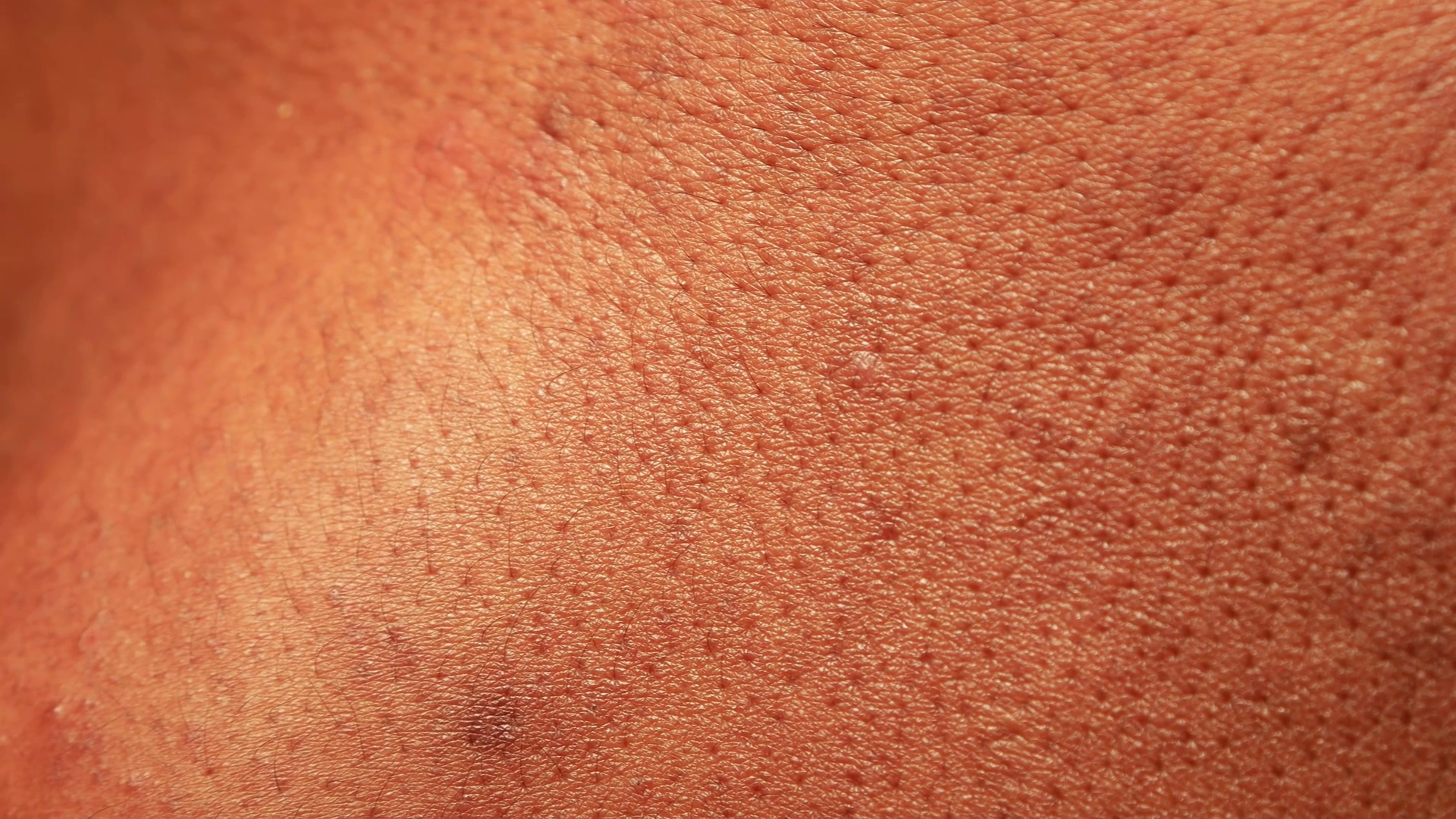 Close up of Human Skin Texture Stock Video Footage.