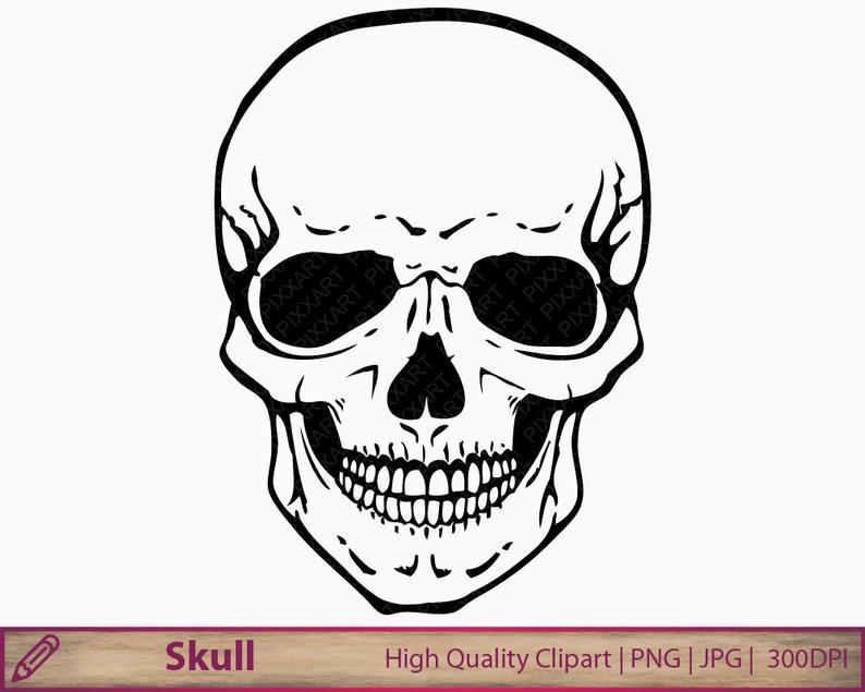 Skull clipart, human skull clip art, horror halloween illustration,  scrapbooking, commercial use, digital instant download, jpg png 300dpi.