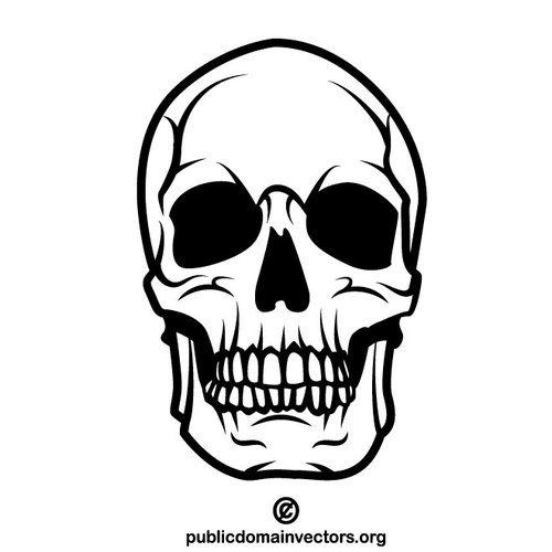 Human skull vector clip art.