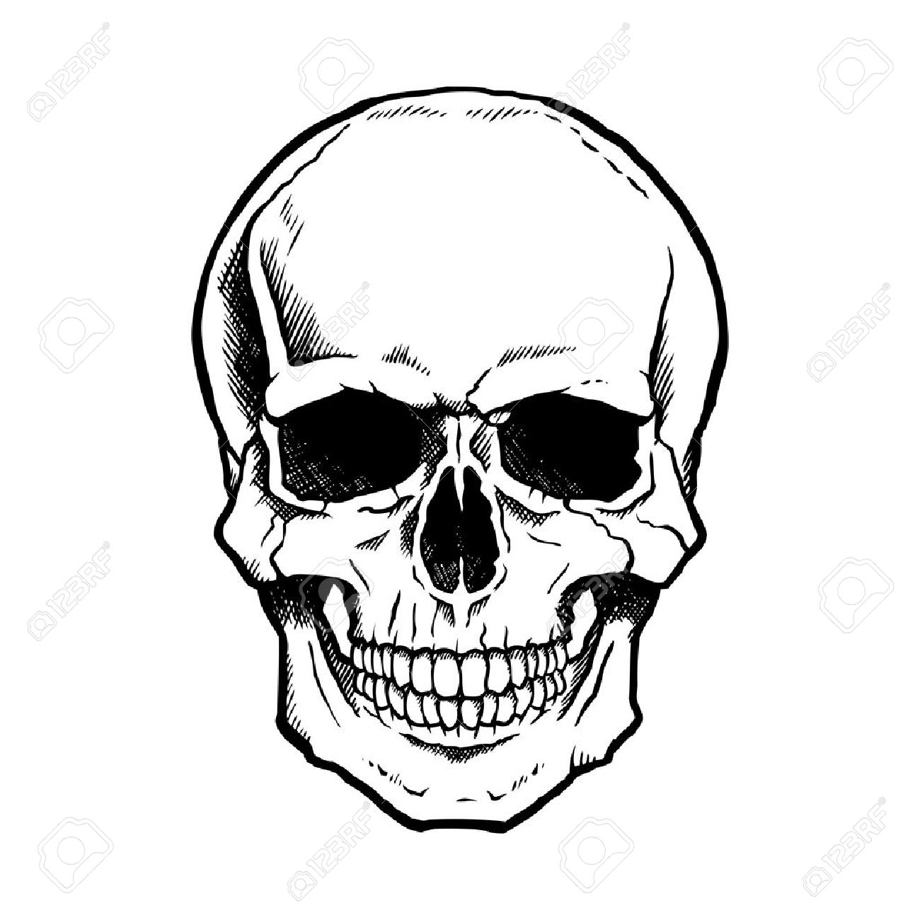 Black and white human skull with a lower jaw..