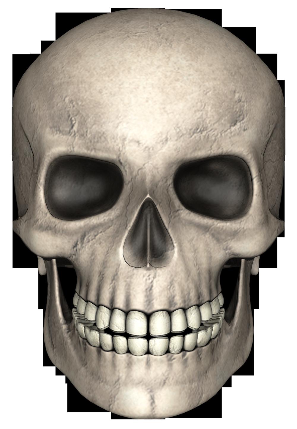 Skull PNG Image.