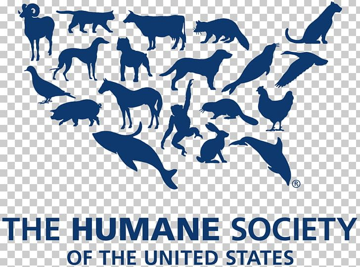 The Humane Society Of The United States Organization Animal.