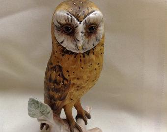 Goebel owl.