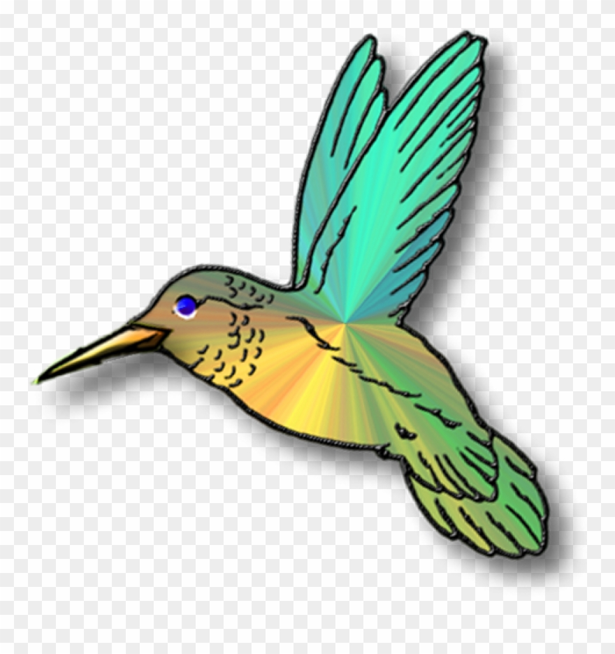 Hummingbird Clip Art Clipart Panda Free Images Animations.
