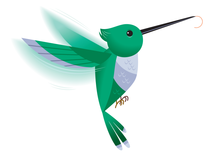 Best Hummingbird Clipart #11904.
