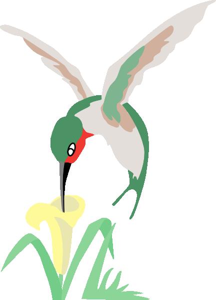 Hummingbird and flower clipart.