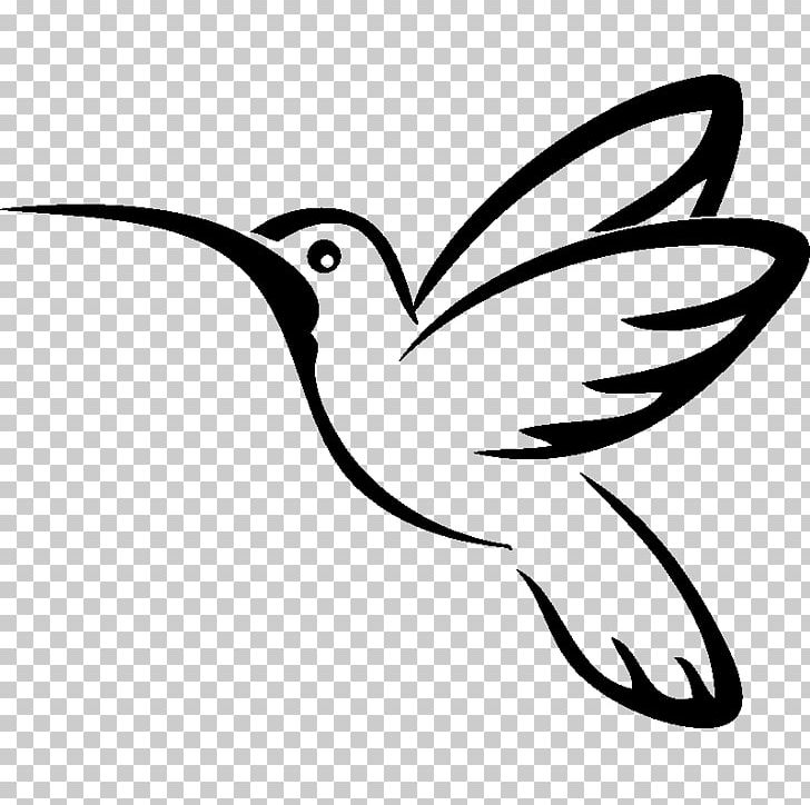 Hummingbird Drawing PNG, Clipart, Animals, Art, Artwork.