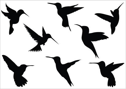 Clip Art Black And White Hummingbird Clipart.