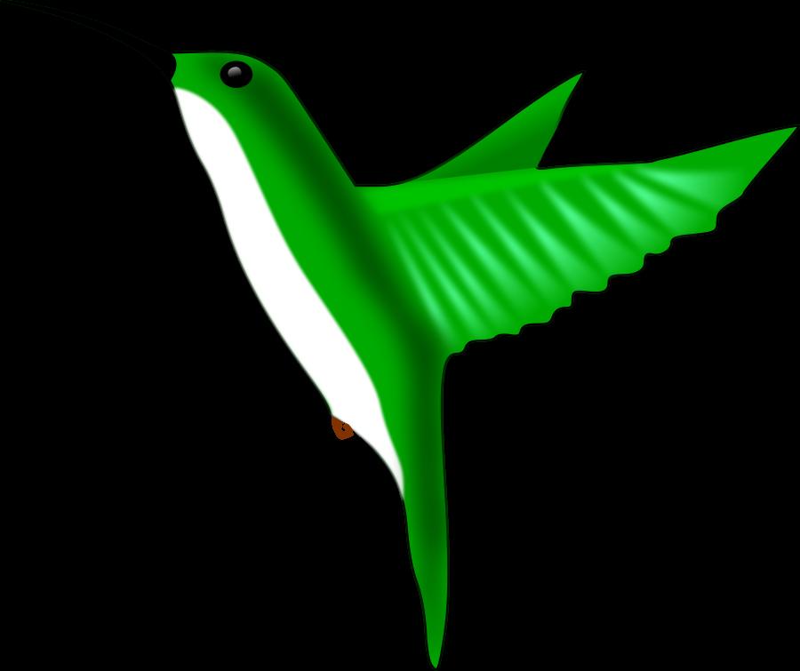 Hummingbird Clipart.