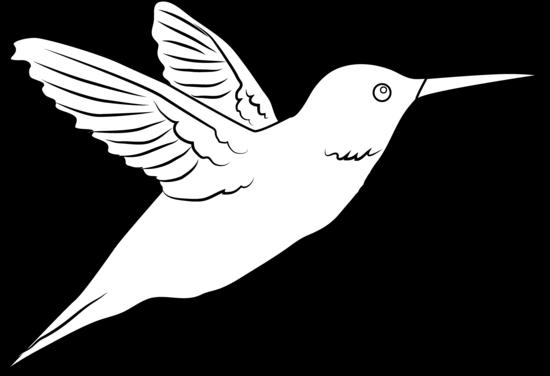 Hummingbird clip art free clipart.