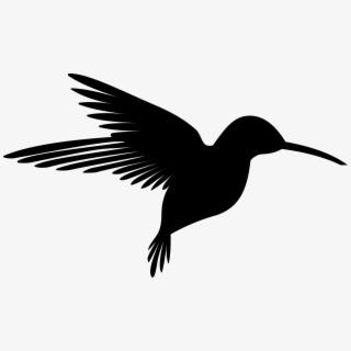 PNG Hummingbird Cliparts & Cartoons Free Download.