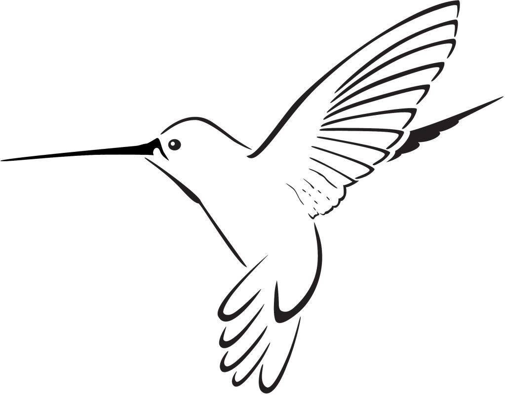 Hummingbird clipart, Hummingbird Transparent FREE for.