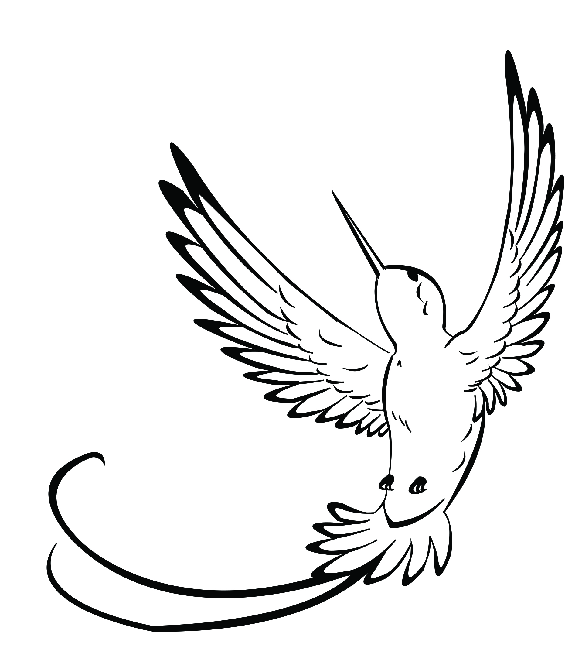 Hummingbird Outline With Hummingbird Clipart Outline : Hummingbird.