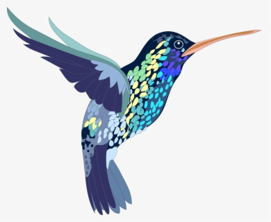 Free Hummingbird Clip Art with No Background.