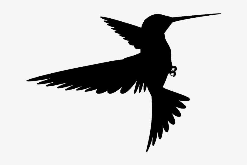 Bird Flying Silhouette.