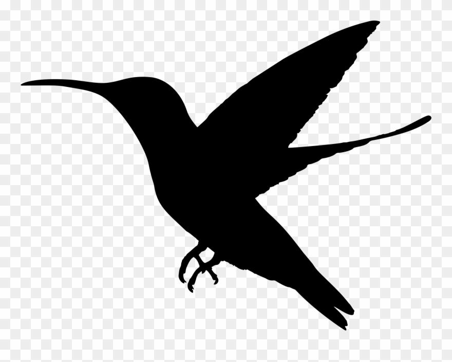 Hummingbird Silhouette Clip Art Www Pixshark Com Pigeon.