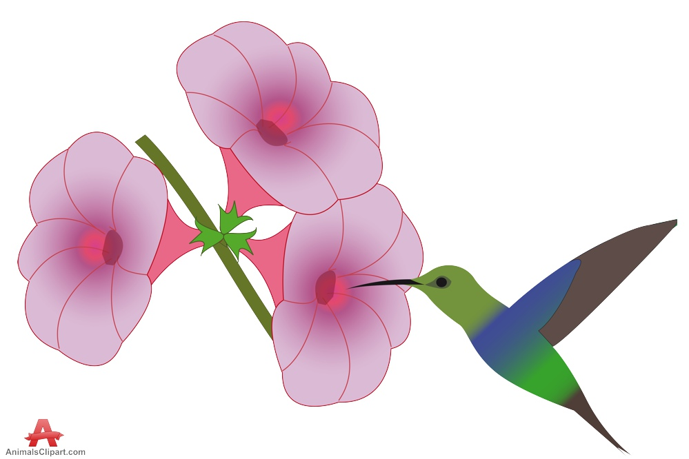 Hummingbirds and flowers clipart.