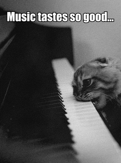10+ best ideas about Choir Humor on Pinterest.