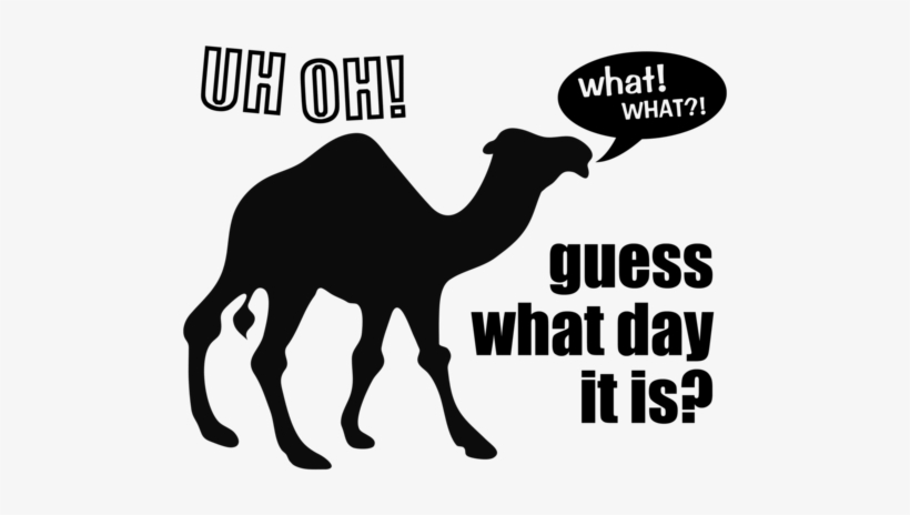 Vector Transparent Library Clipart Camel Hump Day Guess Fancy.