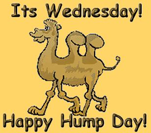 Happy hump day clipart 2 » Clipart Station.
