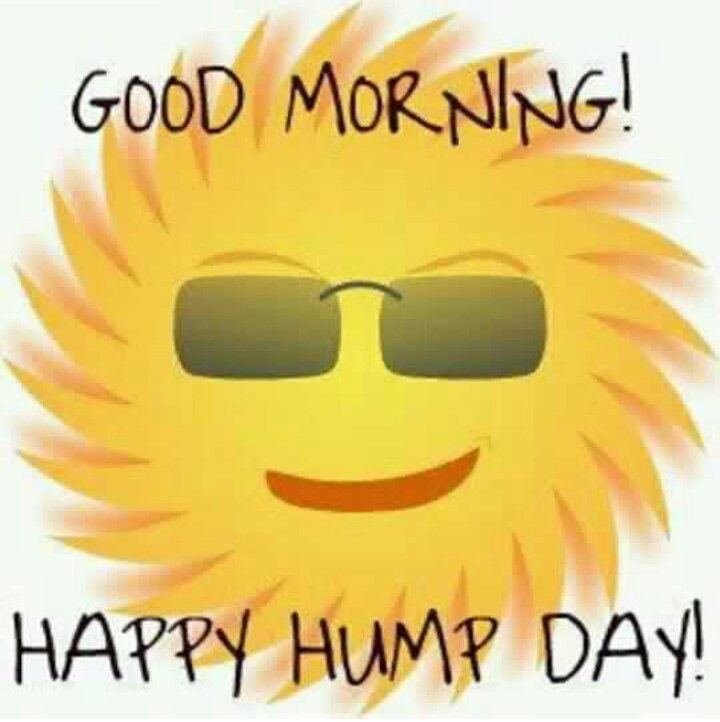 50 Beautiful Hump Day Wish Pictures And Images.
