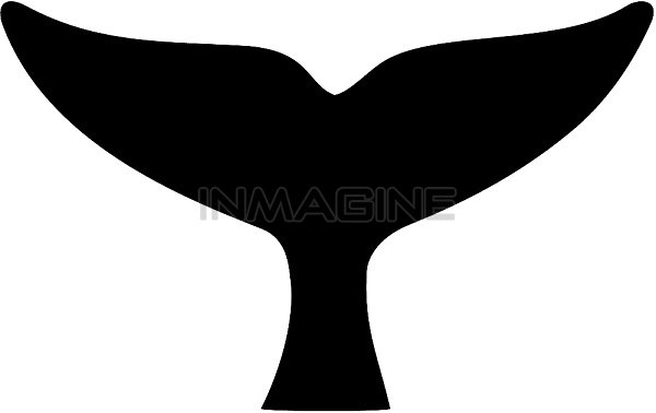Whale Tail Clipart.