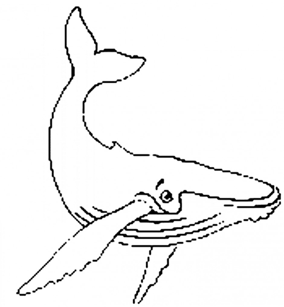 Humpback whale clipart black and white.