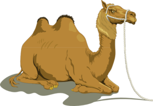 Resting Camel With Two Humps Clip Art at Clker.com.