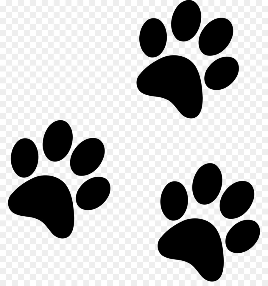 Dog Paw png download.