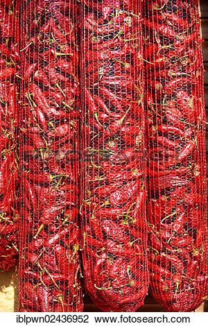 """Stock Photo of """"Chili peppers (Capsicum annuum) drying to make."""
