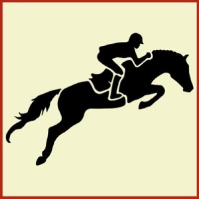Best 2017 Horse Dressage, Hunter Jumper, Running, Reining Horse.