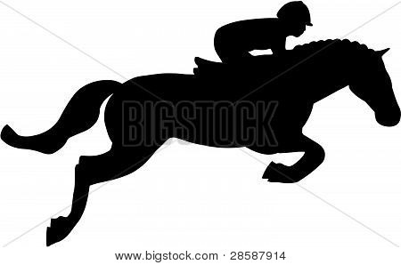 Hunter Jumper Images, Stock Photos & Illustrations.