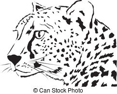 Hunting leopard Vector Clip Art EPS Images. 764 Hunting leopard.