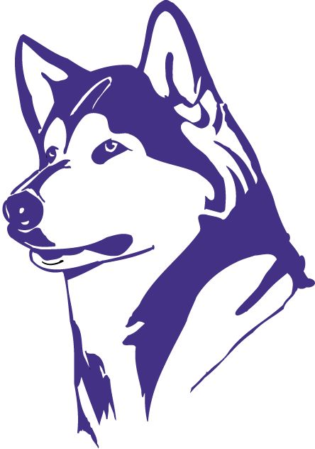 Purple Washington Huskies Logo.
