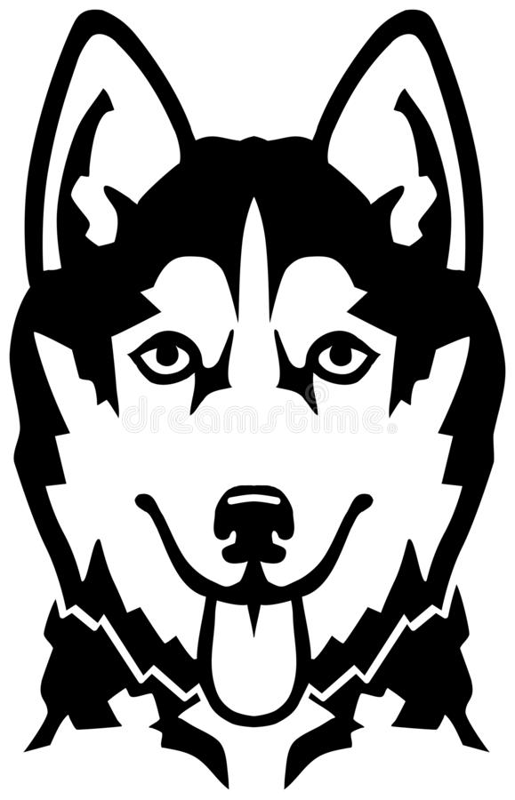 Husky Head Stock Illustrations.