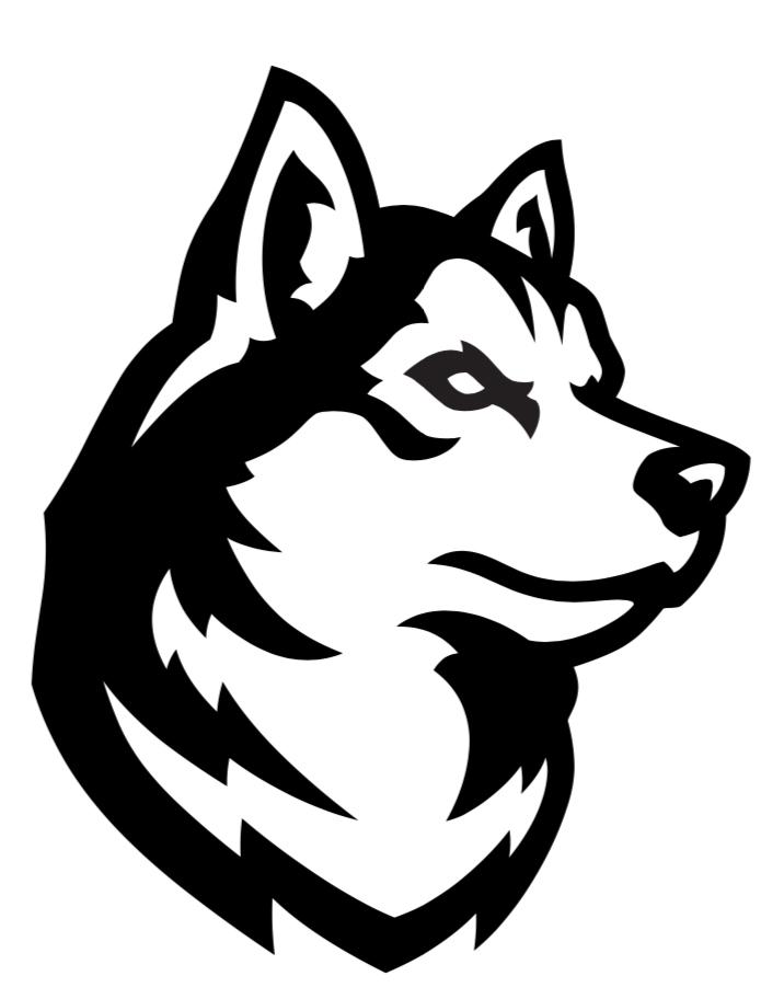 Northeastern unveils new athletics logos.