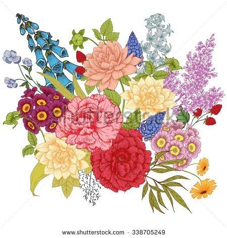 Primrose Hyacinth Stock Photos, Royalty.