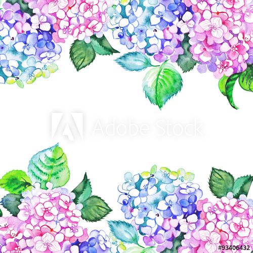 Watercolor hydrangea borders.