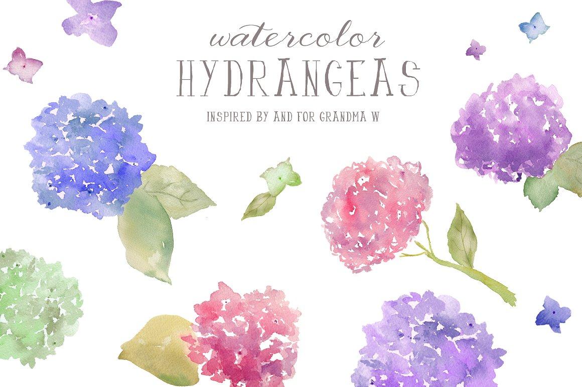 Hydrangea clipart #17