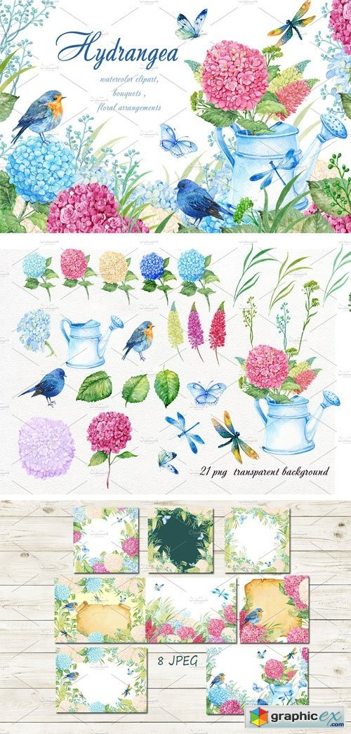 Hydrangea Watercolor Clipart » Free Download Vector Stock.