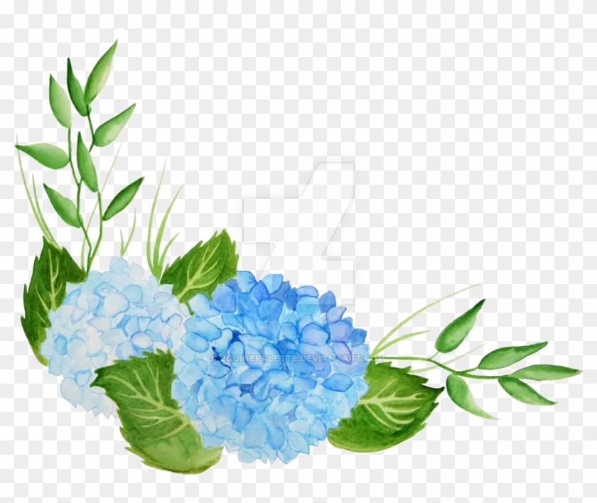 Hydrangea Watercolor Png.