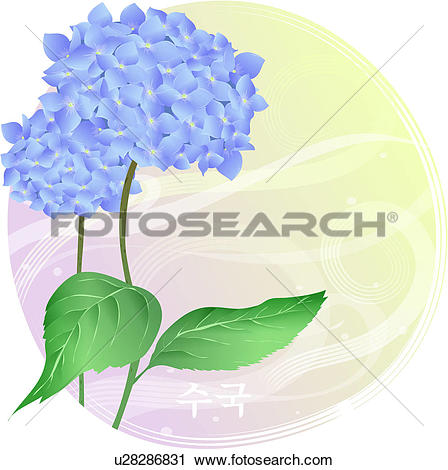 Clipart of blossom, plants, bloom, flowers, flower, hydrangea.