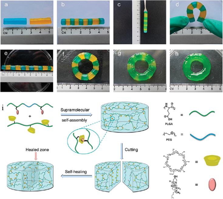 Hydrogels with Self.